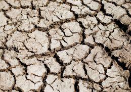 6139050-erosione-di-terra-ruvida-crack-secco-del-deserto-archivio-fotografico